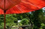 夏の京都で、シンプルな庭に感動!シンプルは心地よい!
